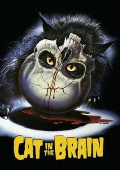 Cat in the Brain (1990)