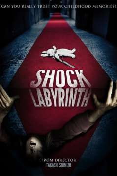 The Shock Labyrinth (2009)