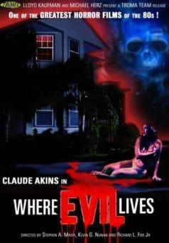 Where Evil Lives (1991)