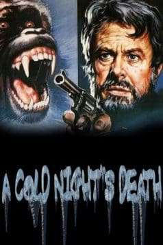 A Cold Night's Death (1973)