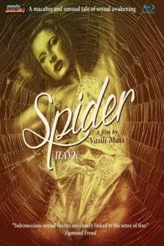 Spider (1991)