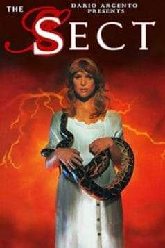 The Sect (1991)