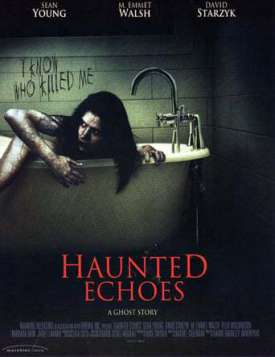 Haunted Echoes (2008)