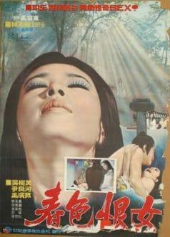 Revenge of a Woman (1971)