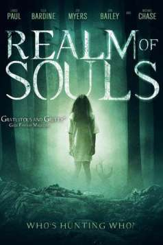 Realm Of Souls (2013)