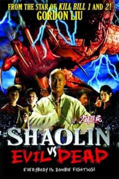 Shaolin vs. Evil Dead (2004)