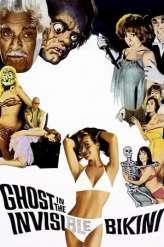 The Ghost in the Invisible Bikini (1966)
