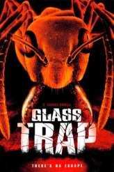 Glass Trap (2005)