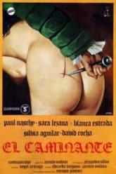 The Traveller (1979)