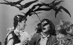 The Birds Review (1963)
