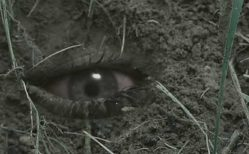 The Burrowers (2008) Review